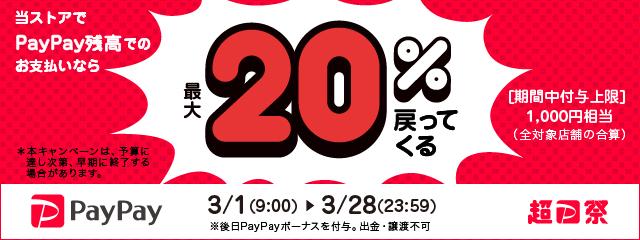2021/3 paypayキャンペーン