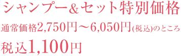 シャンプー&セット特別価格 通常価格2750円~6050円(税込)のところ税込1,100円