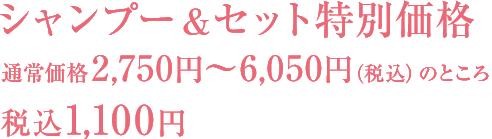 シャンプー&セット 通常価格2750円~5500円(税抜)のところ 税込1,100円